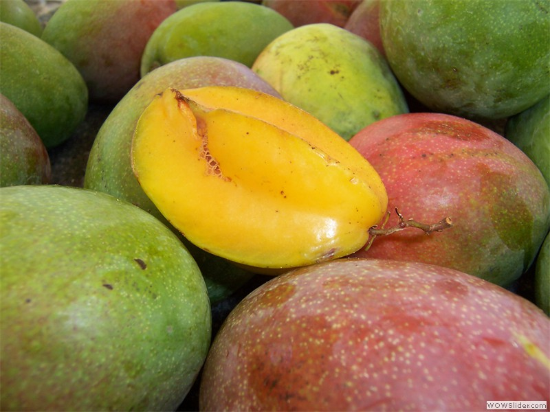 Mangoes and starfruit